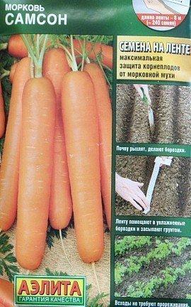 Как повысить урожайность моркови