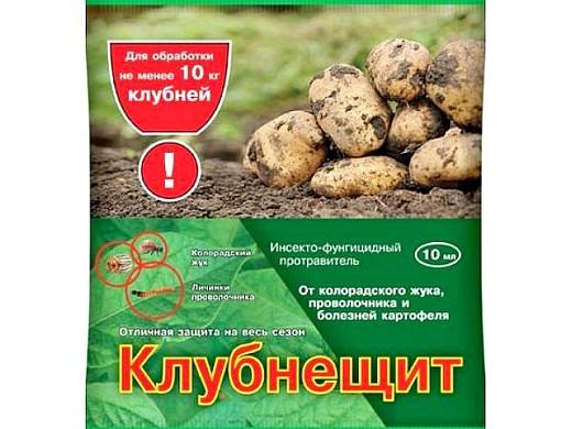 самые эффективные средства от колорадского жука - клубнещит